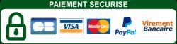 toppng.com-logo-paiement-598x152